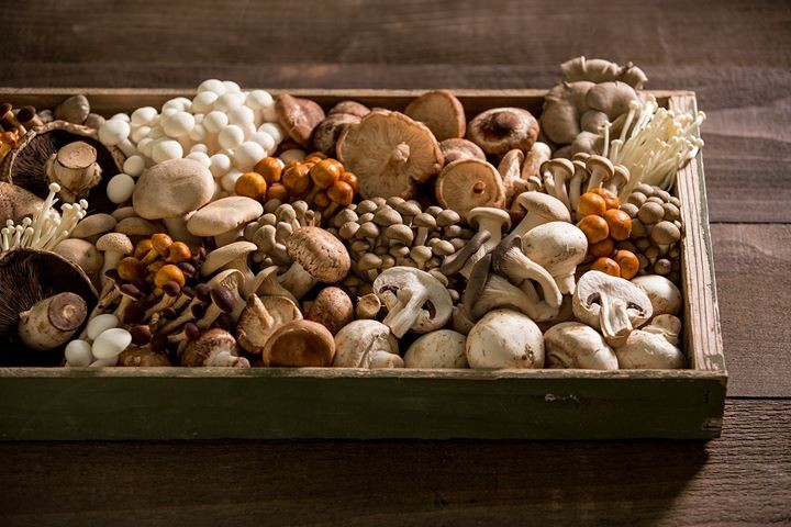 Assorted mushrooms on a wooden tray